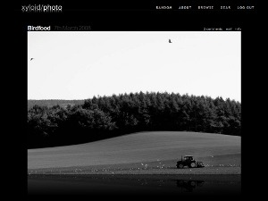 Reflection company WordPress theme