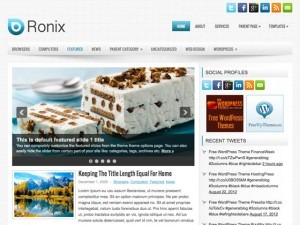 Ronix WordPress blog template