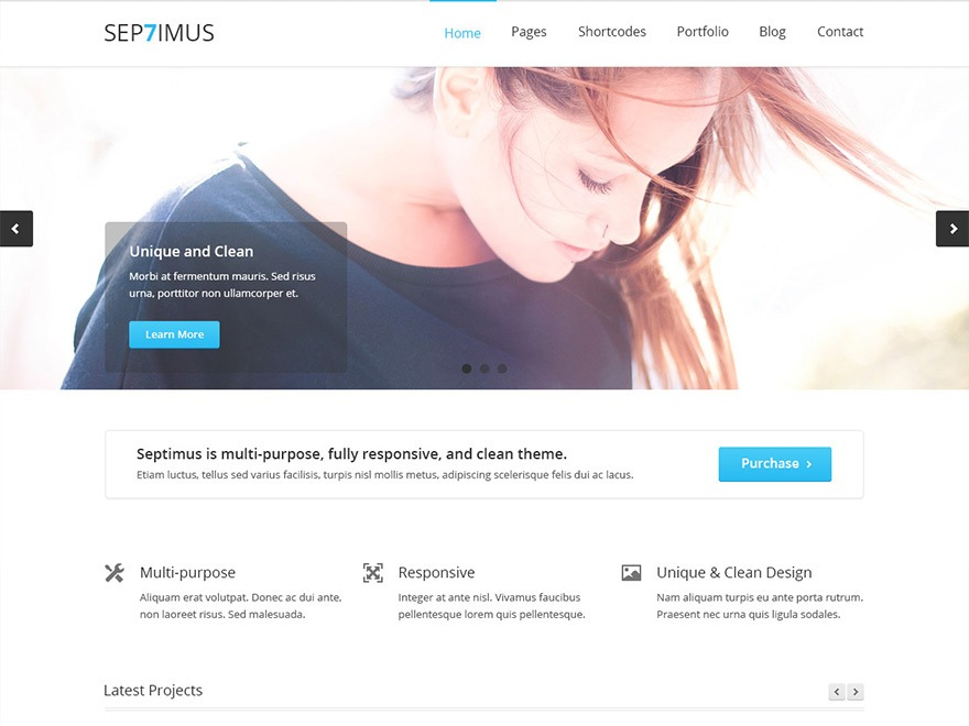 Septimus top WordPress theme
