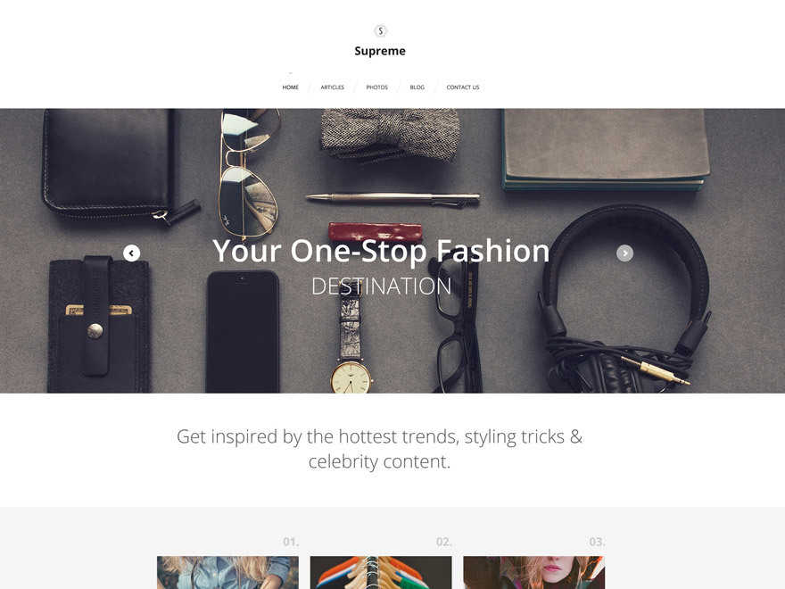 theme56019 WordPress theme