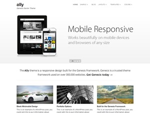 WordPress template Ally