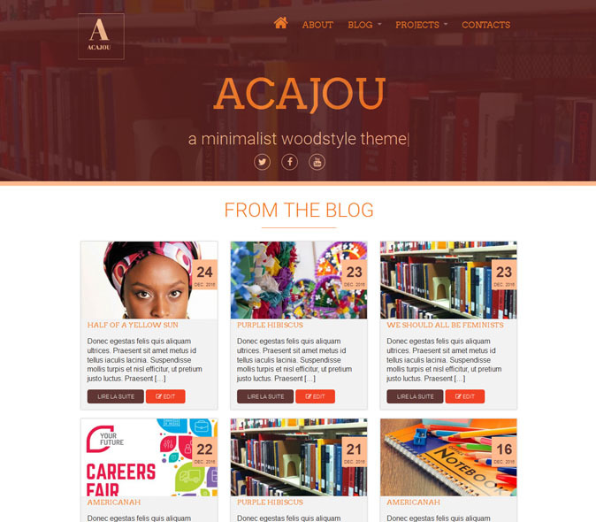 Acajou WordPress theme download