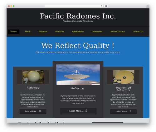 ThemeAlley.Business business WordPress theme - test.pacificradomes.com