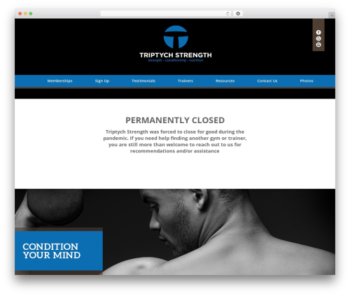WordPress theme Divi - triptychstrength.com