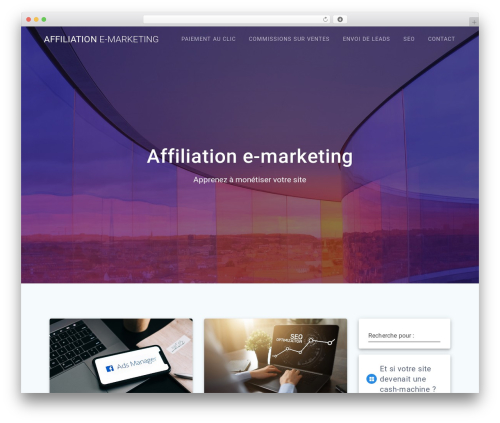 WP template Materialis - affiliationemarketing.com