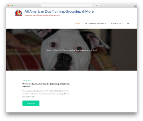 WP theme Pet Business - allamericandogtraining.com
