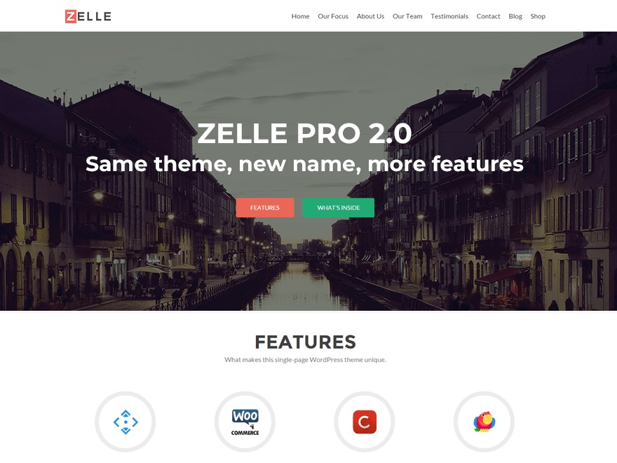 Zelle PRO WordPress template for business