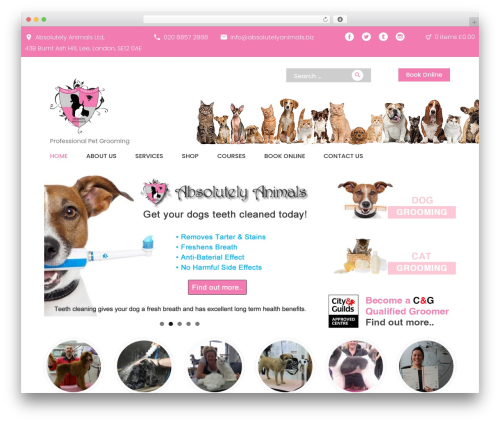 PetCenter WordPress template - absolutelyanimals.biz