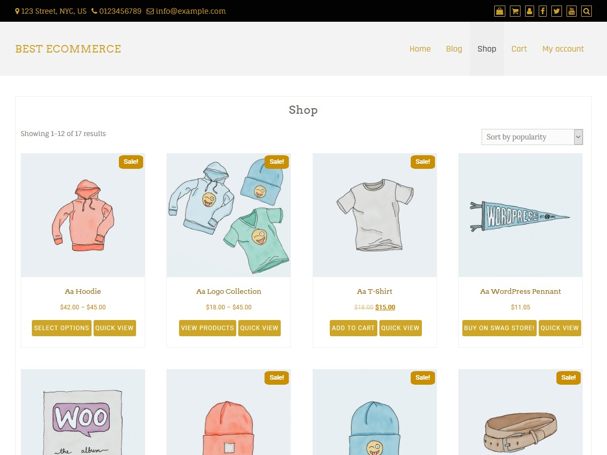 Best eCommerce WordPress shopping theme