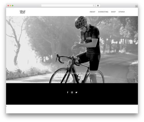 Divi best WordPress theme - hells500.com