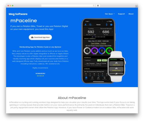 Redel WordPress template - megsoftware.com
