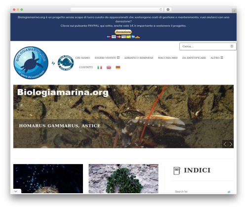 Vinero best WordPress video theme - biologiamarina.org