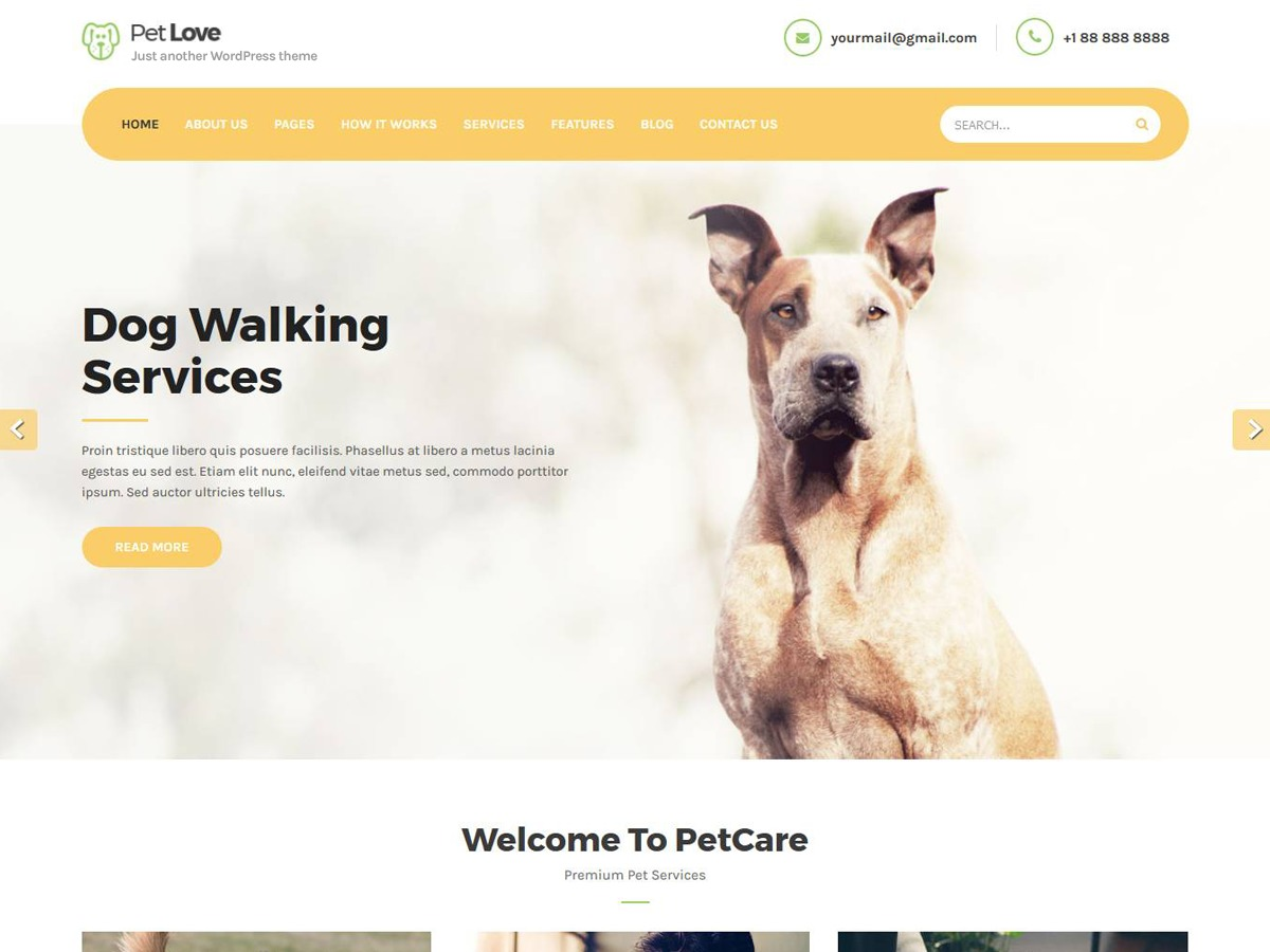 Petlove medical WordPress theme