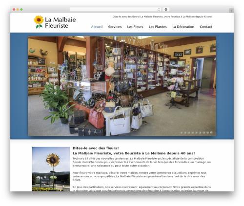 Striking MultiFlex & Ecommerce Responsive WordPress Theme theme WordPress - lamalbaiefleuriste.com