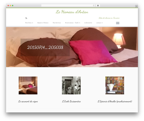 WordPress website template customizr-child - lehameaudantan.com