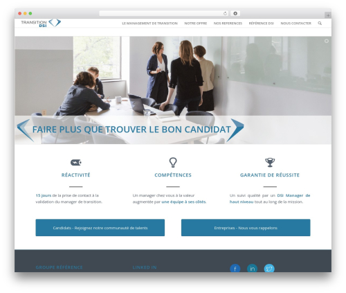 Enfold WordPress theme - transitiondsi.com
