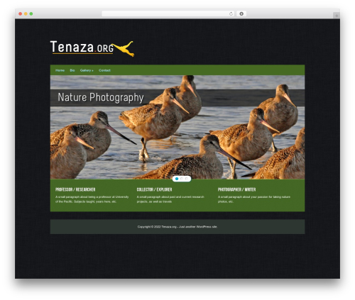 Hector WordPress page template - tenaza.org
