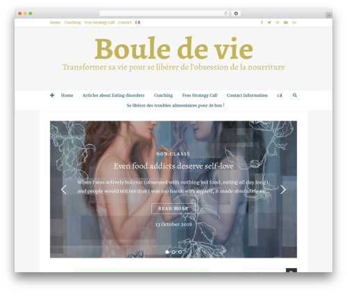WordPress luckywp-table-of-contents plugin - bouledevie.com