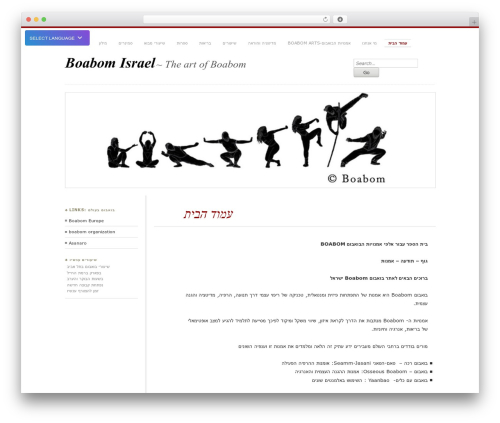 Chateau WordPress page template - boabomisrael.com