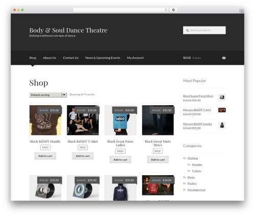 Boutique free WordPress theme - bodyandsouldancetheatre.org