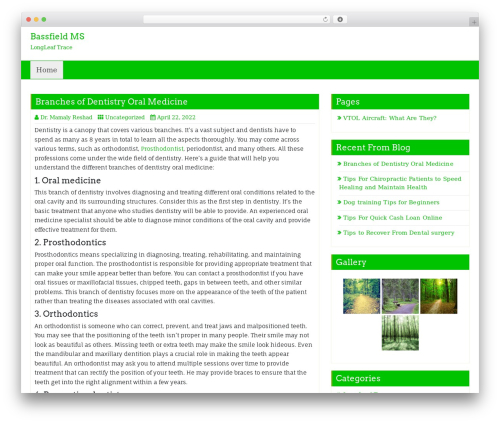 Business Green WordPress template for business - bassfieldms.com