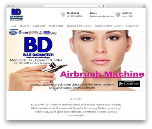 Business Insights WordPress template for business - bluedarmatech.com