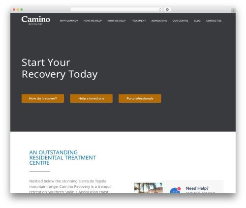 Business Pro WordPress template for business - caminorecovery.com