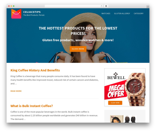 FastBlog WordPress theme download - celiacstips.com