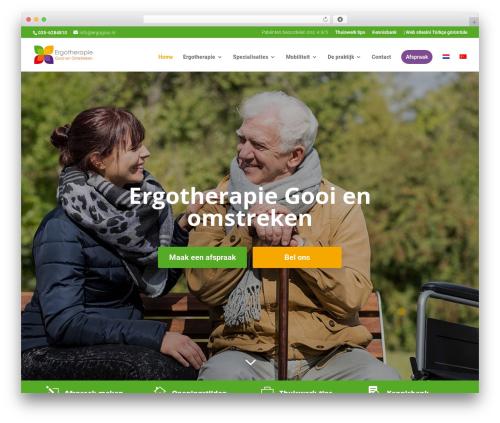 Divi template WordPress - ergogooi.nl