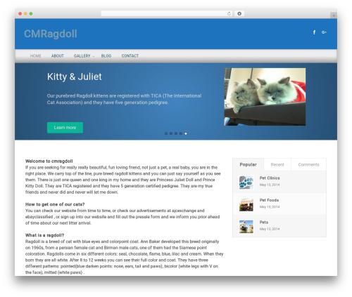 Free WordPress CMS Navigation plugin - cmragdoll.com