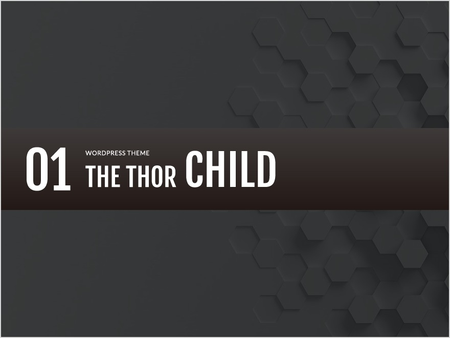 WordPress website template THE THOR CHILD