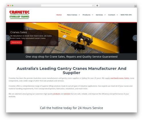 BusiProf Pro WordPress theme - cranetec.com.au