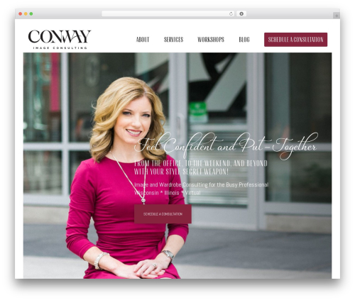 Movedo best WordPress template - conwayimageconsulting.com