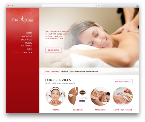 BeautySpot massage WordPress theme - theannexclinic.com
