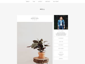 mell best WordPress theme