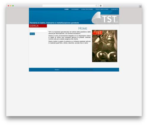 TST WordPress website template - tst-srl.it