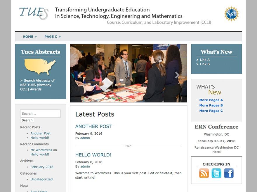 AAAS: Enfuse WordPress page template