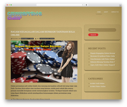 ioCarton WordPress website template - canvasprints-cheap.com