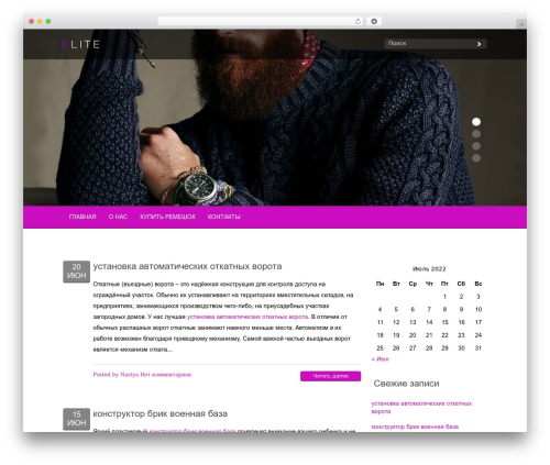 Elite WordPress theme - amst-3003-official.ru