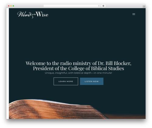 Salient WordPress theme design - wordtothewise.org