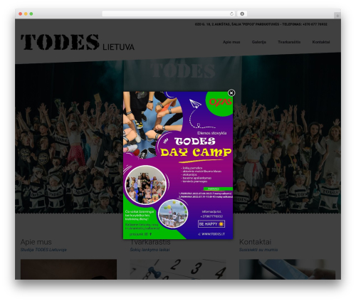 Dance Studio WordPress theme - todes.lt