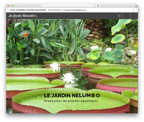 Betheme premium WordPress theme - le-jardin-nelumbo.com