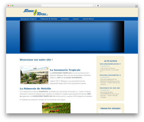 Oracle top WordPress theme - savonnerie-tropicale.mg