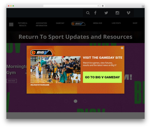 Best WordPress theme Basketball Victoria - bigv.com.au