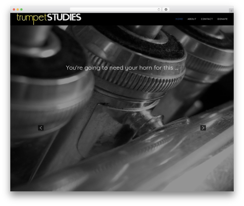 Free WordPress Companion Sitemap Generator plugin - trumpetstudies.com