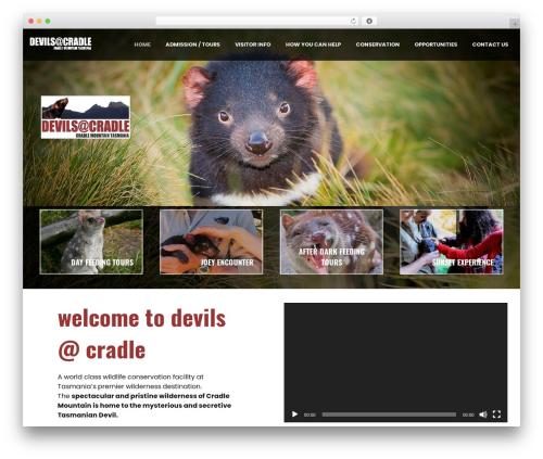 WordPress template Skylar - devilsatcradle.com