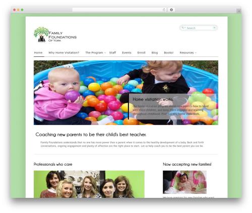 Cloriato Lite free WordPress theme - family-foundations.com