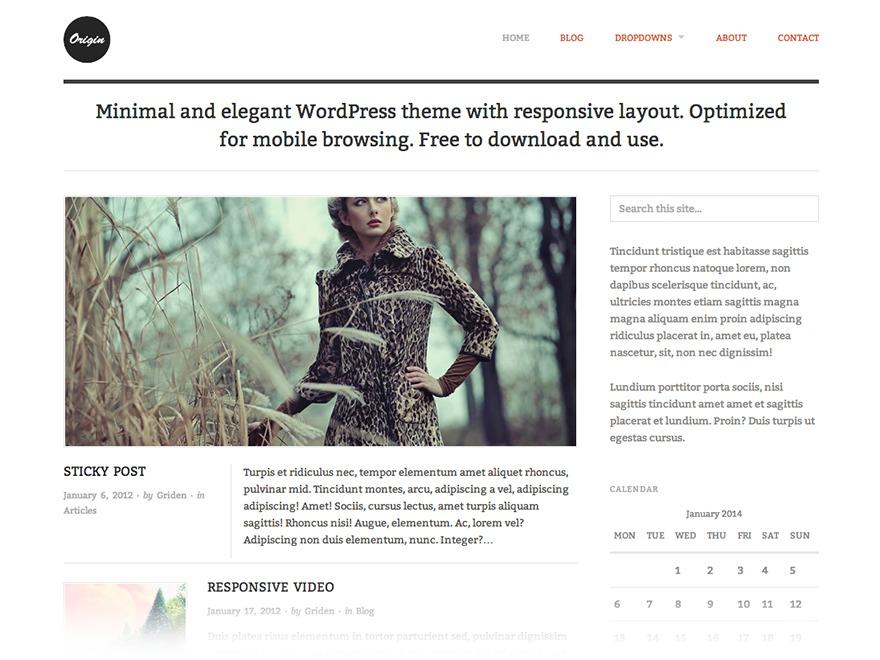 Origin Child Theme WordPress template