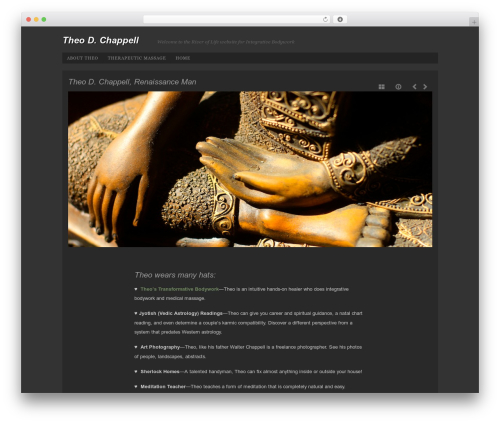 Photo Workshop WordPress store theme - theodchappell.com