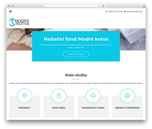Regina Lite WordPress theme download - modrakotva.cz
